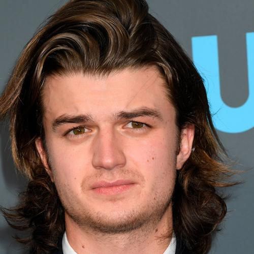 "Steve Harrington (""Stranger Things"") ne ressemble plus à ça !"